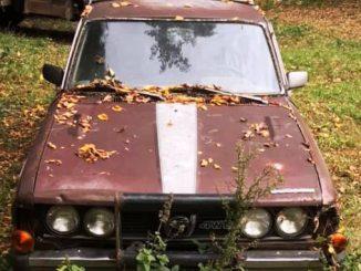 1980 wabasso mn